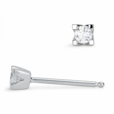 Briljiantöronringar i 14 karat vitguld med diamanter